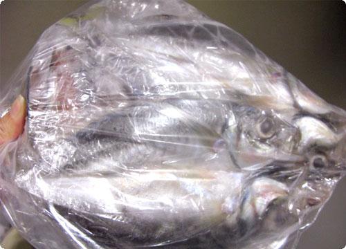 魚と肉とコンパクトデジイチ。